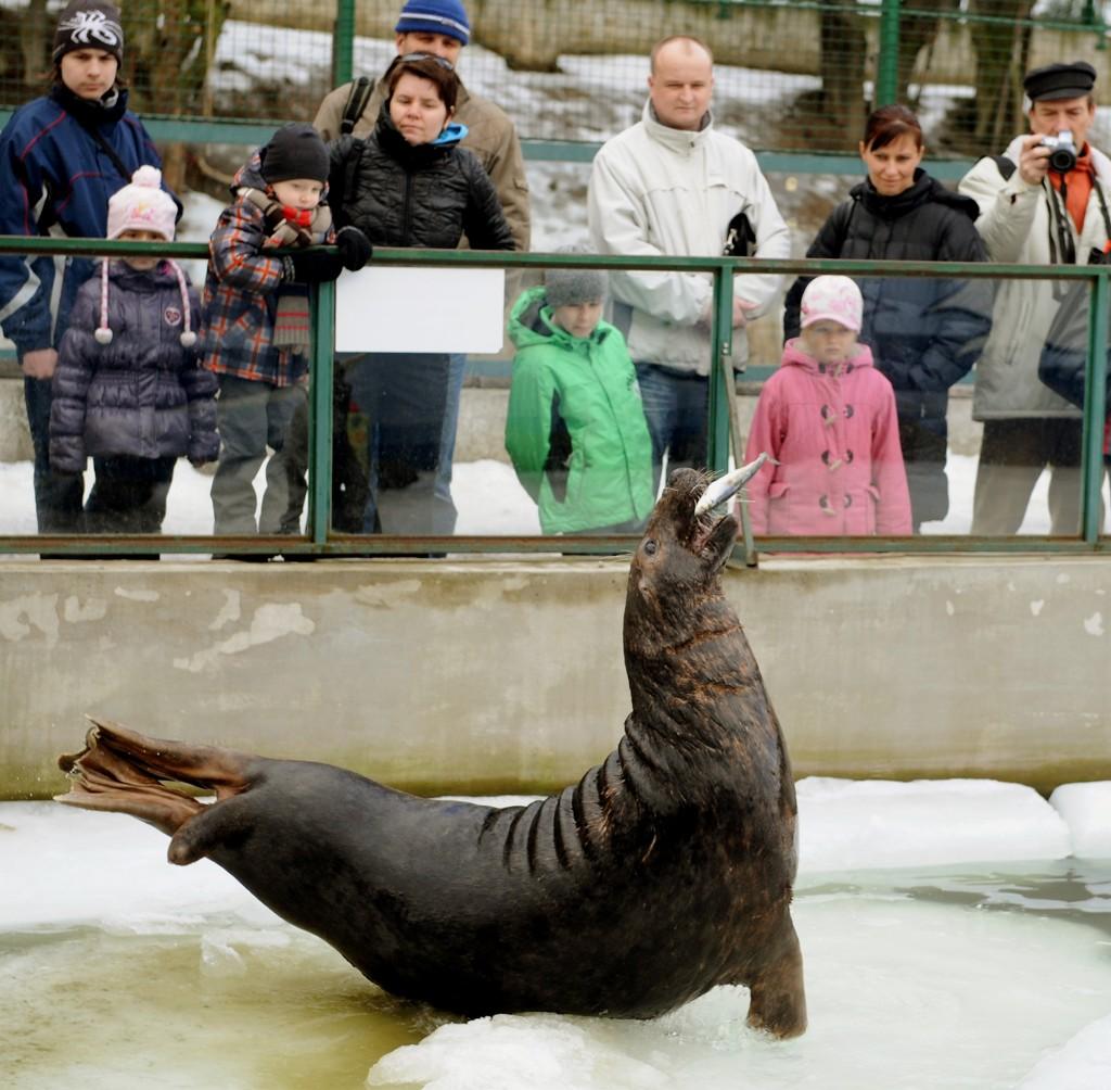 tulene zoo